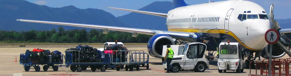 Baggage Reconciliation System